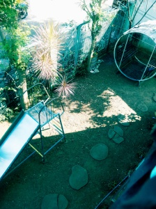 I wish I can capture the birds' chirping sound when you sit on our swing set in the morning. Happy mornings create happy days!
